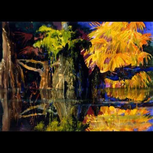Jim Holehouse, Winter Garden, FL  www.tropicartdesign.com