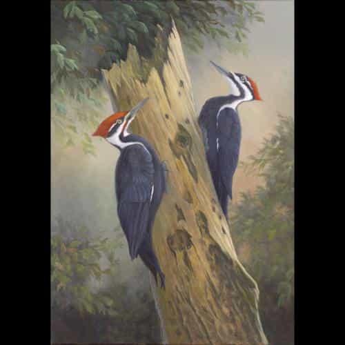 Terry Smith, Land O Lakes, FL  www.terrysmithstudio.com