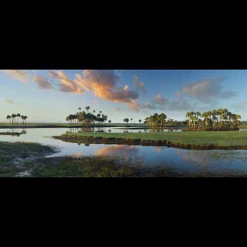 Robert Clibbon, New Smyrna Beach, FL  www.clibbongallery.com