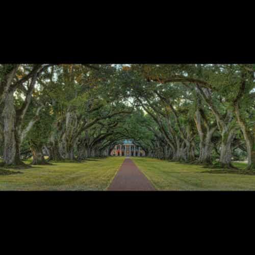 Robert Green, Winter Park, FL  www.rgreenpix.com